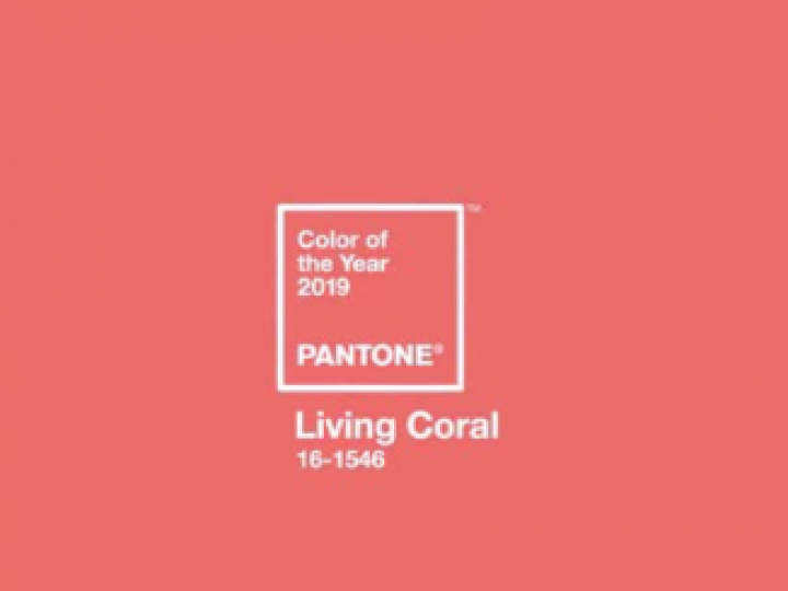 How to integrate pantones 2019 color in your decor